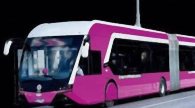 Muharrem Kasıtoğlu'ndan İstanbul'a 'Pembe Metrobüs' Önerisi