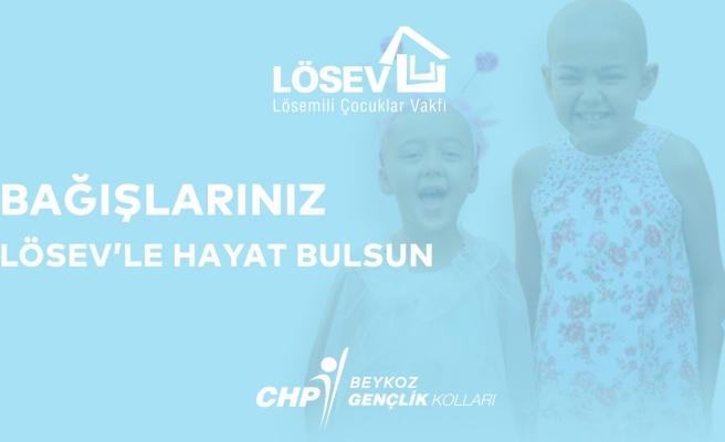 CHP Gençliği Lösevlilere Hayat Buluyor
