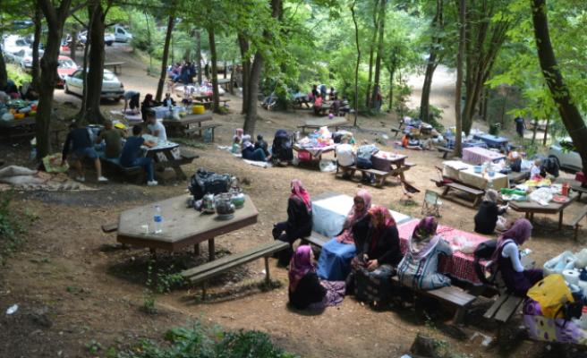 Kastamonu, Ambarcılar Derneği Piknikte Buluştu