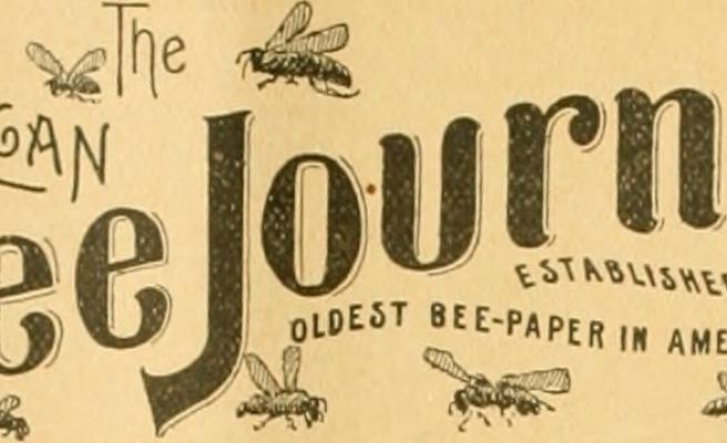 Amerikan Arı Dergisi'nin Öyküsü