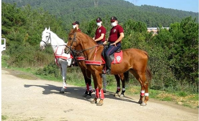 Atlı polis ekipleri denetime başladı