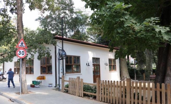 Akbaba'nın Meşhur Çınarlı Köy Kahvesi Yenileniyor