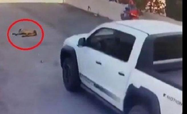 Beykoz'da vicdansız sürücü: Yerde yatan köpeği ezip kaçtı