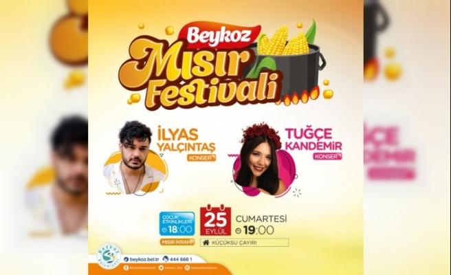 Tarihi Beykoz Mısır Festivali bu sene de kutlanacak