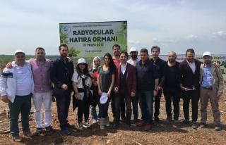 Radyocular Hatıra Ormanı Kurdu