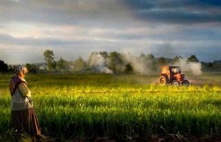 Beykozlu Çiftçiler, Cumhurbaşkanı İle Görüşecek