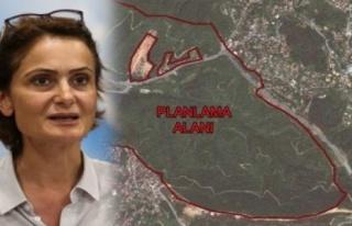 CHP'li Kaftancıoğlu: 'Beykoz'daki Doğa Katliamını...