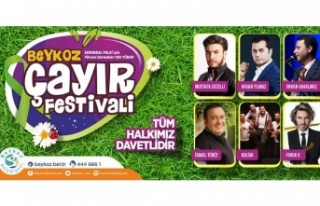 Beykoz Çayır Festivali, Serebral Palsi Hastalığına...