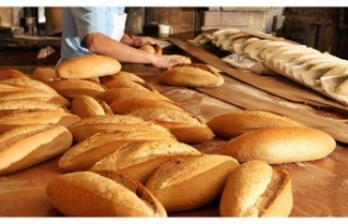 Beykozlular Ekmeğini Çöpten Kazanacak