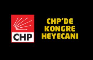 CHP Beykoz'da Kongre Heyecanı