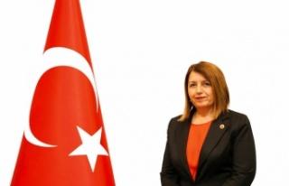 CHP'li Demirel'den basın açıklaması