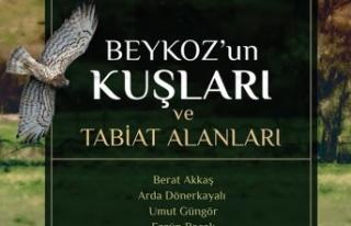 Beykoz'un 287 kuş türü bir kitapta toplandı