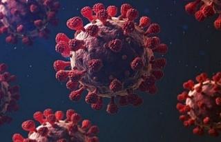 Beykoz Koronavirüs tablosunda son durum