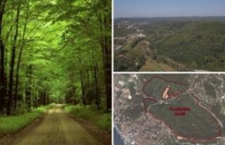 Ormanlar yok olmasın! Siyasilerden ve STK'lardan...