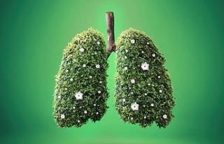 Yeşilay Cemiyeti Beykoz'u sigarasız yaşama davet...