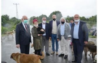 Beykoz'un STK'ları sokak canlıları için harekete geçti