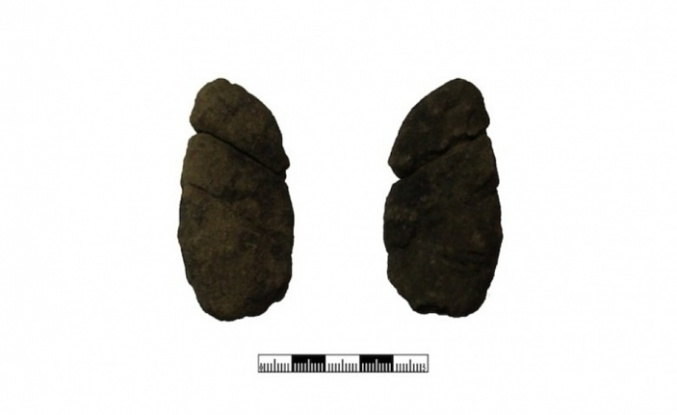 Beykoz'daki Yüzey Araştırmasında Falluslar Bulundu